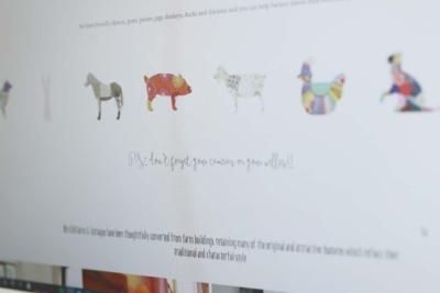 Birchill Farm website | Salt Media